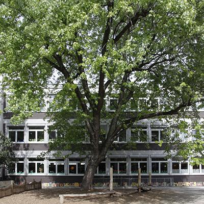 Mozartschule M6